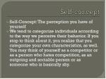 self concept1