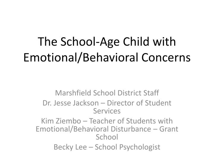 the school age child with emotional behavioral concerns n.