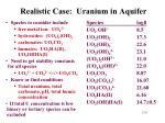 realistic case uranium in aquifer