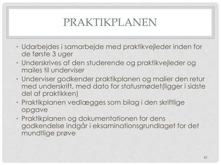Praktikplanen