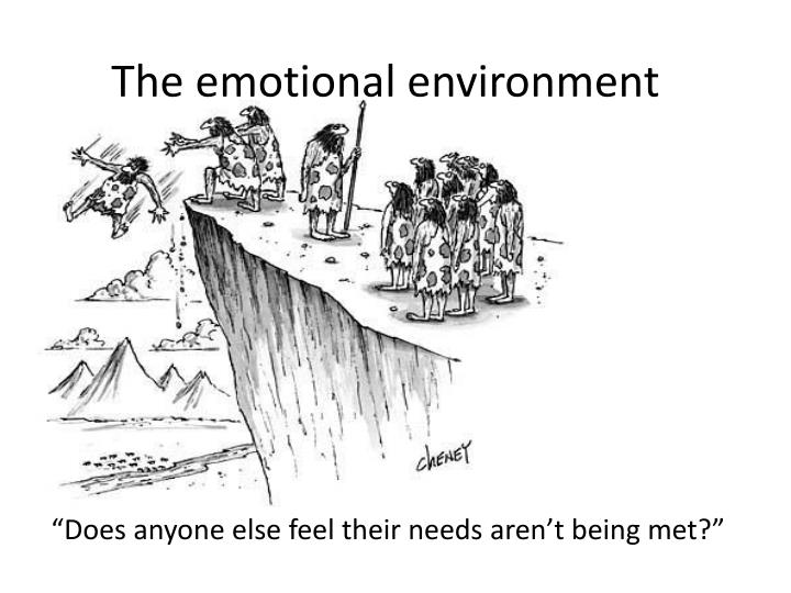 the emotional environment n.