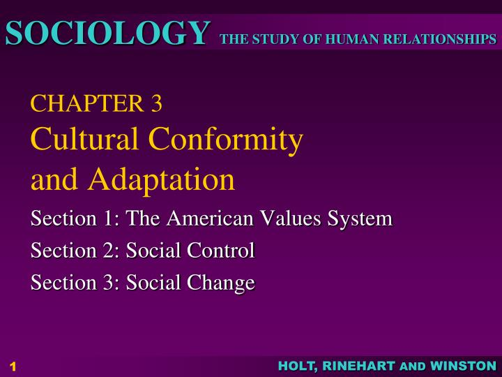 culture adaptation and cultural change essay 'cross-cultural adaptation' is defined as the phenomenon in which individuals who, upon relocating to an unfamiliar cultural environment, strive to establish and maintain a relatively stable, reciprocal and functional relationship with the environment.