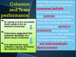 cohesion and team performance