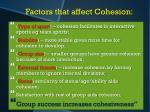factors that affect cohesion