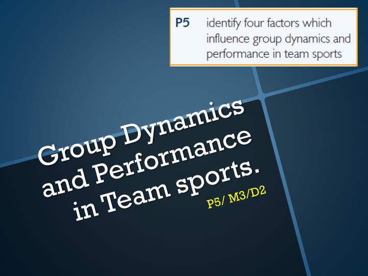 group dynamics and performance in team sports n.