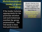 multidimensional model of sport leadership