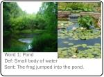 word 1 pond def small body of water sent the frog jumped into the pond