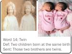 word 14 twin def two children born at the same birth sent those two brothers are twins
