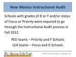 new mexico instructional audit