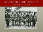 leopold rules the congo as a slave colony