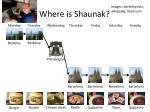where is shaunak