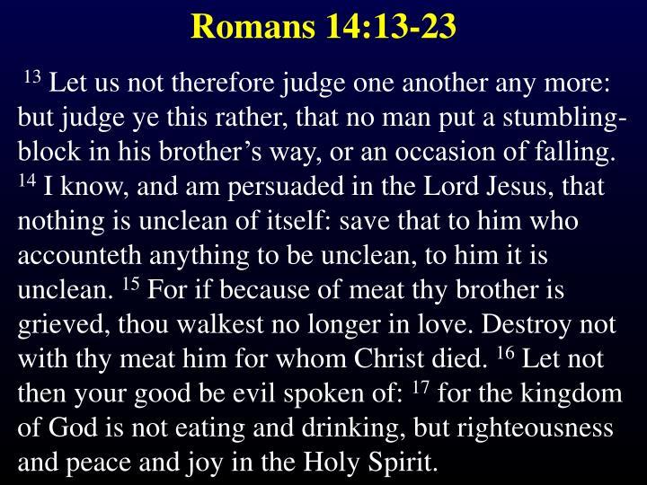 Romans 14:13-23