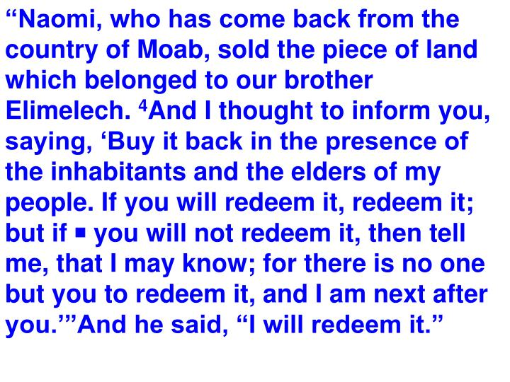 """""""Naomi, who has come back from the country of Moab, sold the piece of land which belonged to our brother"""