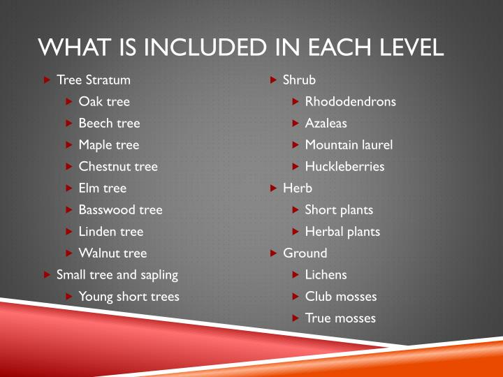 What is included in each level