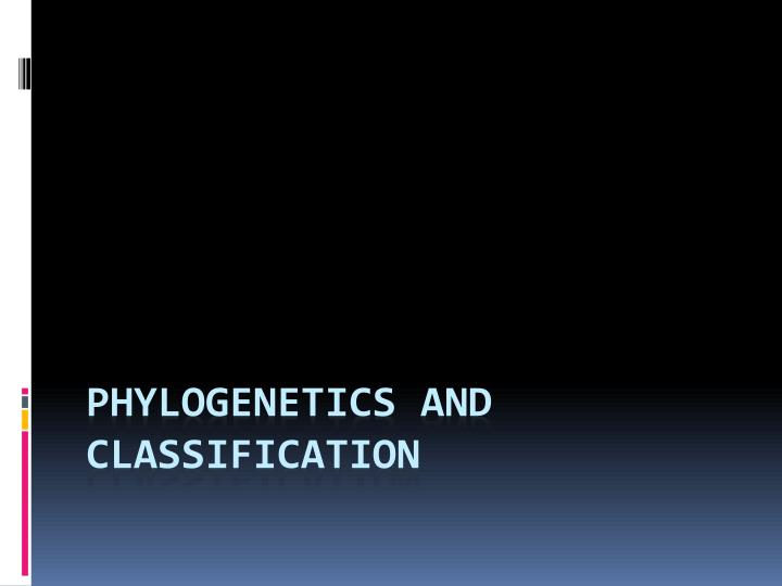 phylogenetics and classification n.