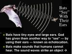 bats see with their ears