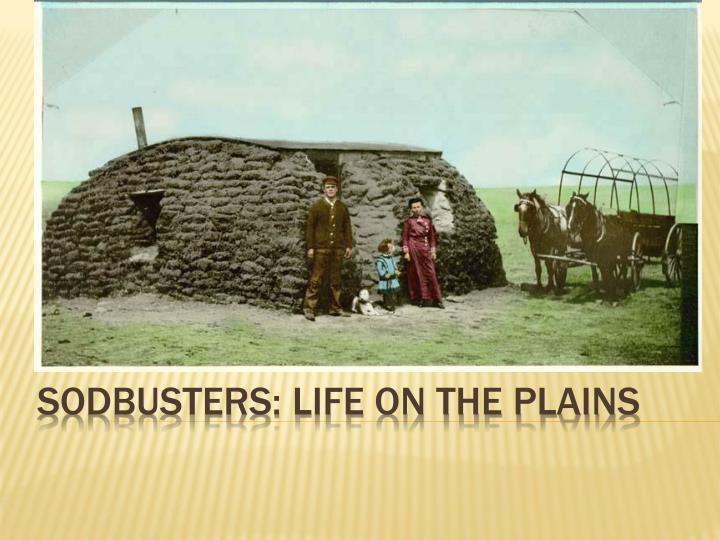 sodbusters life on the plains n.