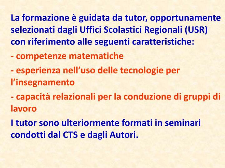 La formazione è guidata da tutor, opportunamente selezionati dagli Uffici Scolastici Regionali (USR) con riferimento alle seguenti caratteristiche: