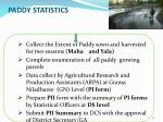 paddy statistics