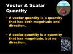 vector scalar quantity