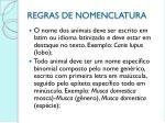 regras de nomenclatura