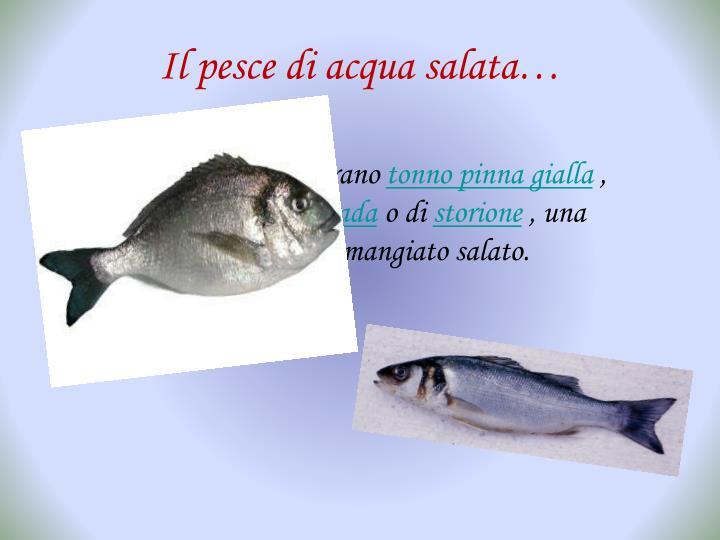 Il pesce di acqua salata…