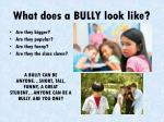 what does a bully look like