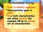 dichotomous keying