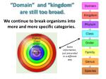 domain and kingdom are still too broad