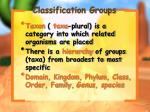 classification groups