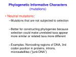 phylogenetic informative characters mutations