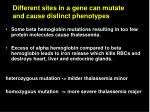 different sites in a gene can mutate and cause distinct phenotypes