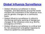global influenza surveillance