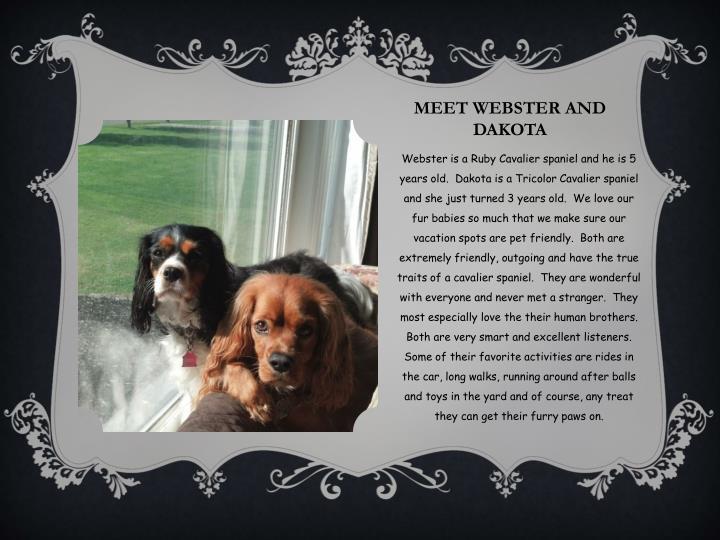 Meet Webster and Dakota