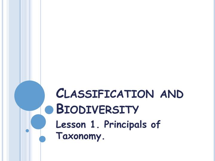 classification and biodiversity n.