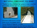 but still like dust i ll rise