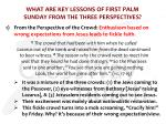 what are key lessons of first palm sunday from the three perspectives1