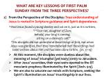 what are key lessons of first palm sunday from the three perspectives2