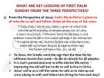 what are key lessons of first palm sunday from the three perspectives4