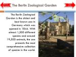 the berlin zoological garden