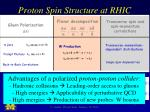 proton spin structure at rhic