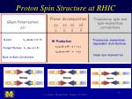proton spin structure at rhic1