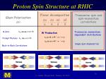 proton spin structure at rhic3