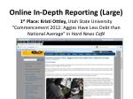 online in depth reporting large1