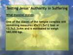 testing jesus authority in suffering10