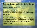 testing jesus authority in suffering105