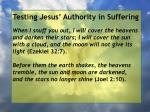 testing jesus authority in suffering111