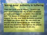 testing jesus authority in suffering113