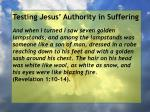 testing jesus authority in suffering128