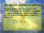testing jesus authority in suffering132